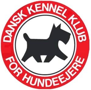 dkk-stor