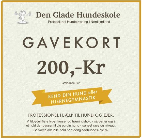 Gavekort-200 DKK